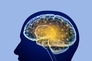 image-neural-training-b-600x400